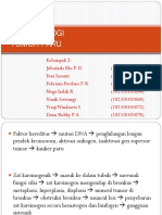 kel 2.pptx