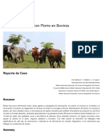 Bovinos Intoxicación Aguda Con Plomo, Revista Acovez, Veterinaria