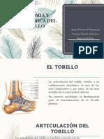 Anatomia y Biomecanica Del Tobillo (1)