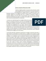 Análisis de La Evolución de La Iglesia Católica en El Perú