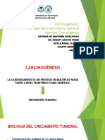 AGENTES CANCERIGENOS  GRUPO 8 CLASE 15.2.pptx