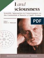 Cajal and Consciousness