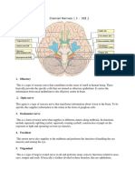 Cranial Nerves and Its Function