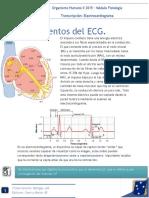4. Electrocardiograma Normal y Su Interpretación