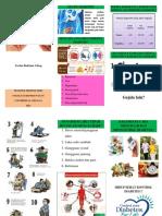 Leaflet Diabetes 1