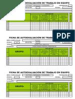 Ficha de Autoevaluación - Trabajo en Equipo- 4 Items