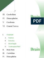 Brain Final