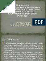 Mini Project Persentasi 2017