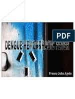 Dengue Hemmorhagic Fever (DHF)