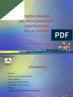 Vision Del Procedimiento Ordinario en Lopnna