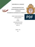 AVITOMINOSIS.docx
