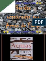 armas de fuego.pptx
