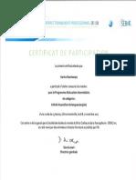 certificat ib