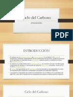 CICLO DEL CARBONO.pptx