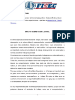 ENSAYO Clima Organizacional