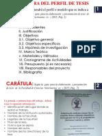 269879813-Perfil-de-Tesis-Veterinaria.pptx