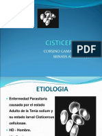 cisticercosis-1