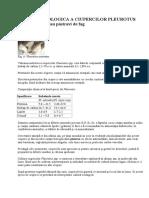 101118163-51649475-Cultura-Ecologica-a-Ciupercilor-Pleurotus.pdf