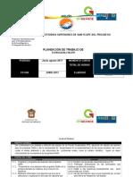 Planeación de Curso Delfin Puentes Sustentables Junio-Agosto 2017