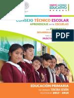 PRIMARIA 3a Sesión CTE 2017-18 GUIA