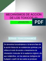 Clase 2 b Fases y Mecanismos de Accion de Los Toxicos (II)