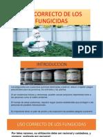Uso Correcto de Los Fungicidas