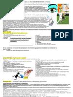 Teoria del Bloque I Fisica.pdf