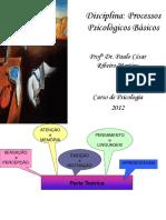 216017820-Processos-Psicologicos-Basicos.ppt
