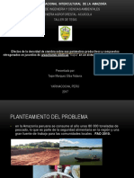 sustentacion final.pptx