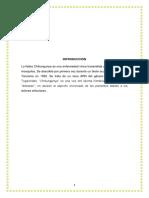 CHIKUNGUNYA-Monografia.docx