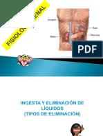 Fisiología Semana 10 Estomat. Fisiología Renal