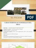 EL PALMAR
