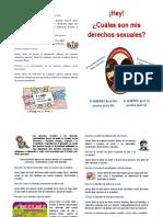 Derechos Sexuales y Reproductivos[1]