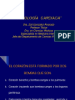 B-zuli Fisiologia Cardiaca