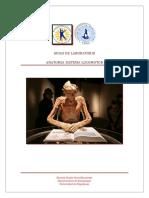 Guias 1 Generalidades de Anatomia