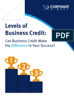 Three Levels of Biz Credit