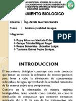 Grupo 9- Tratamiento Biologico