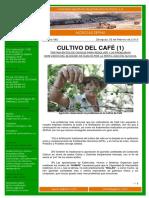 082---02.12.13---Cultivo-del-Cafe--769---1-