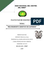 MEJORAMIENTO CAPRINO