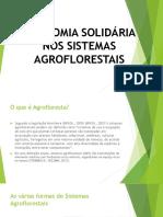 Economia Solidária Nos Sistemas Agroflorestais (1)