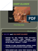 Salivary Glands.pptx