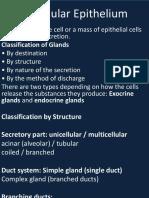 glandular epithelium.pptx