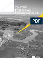2009 Ernst Young Business Risk Report Asset Management