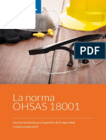 ISO ohsas-18001-gestion-seguridad-salud-ocupacional.pdf