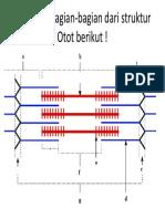 PR Otot.pptx