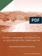 Medio_Ambiente_en_el_Mutun.pdf