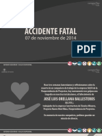 Reflexion Accidente Fatal 07 Nov.pdf