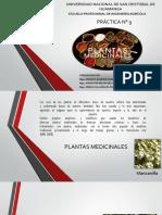 Plantas Medicinales Pract.9