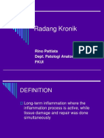 Lecture 22B Radang Kronik
