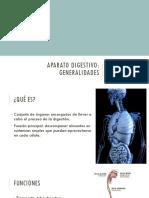 Aparato digestivo - generalidades